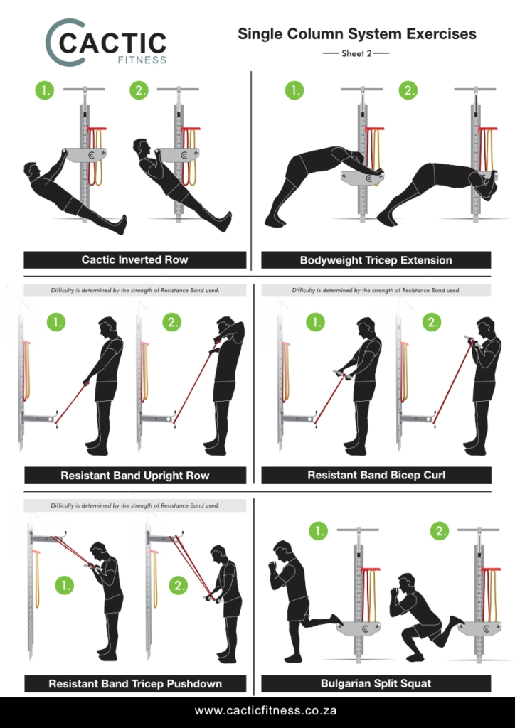 Cactic Fitness Single Column System Exercises 2