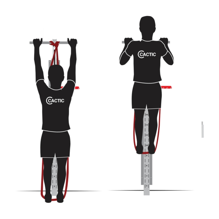 Pull Up Resistance Band Assisted